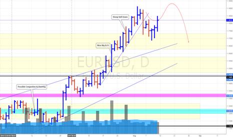 EURUSD: EUR/USD Daily Update (13/8/17) *Slightly Bearish