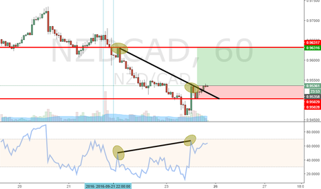 NZDCAD:  Divergence, testing a new software
