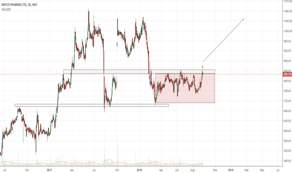 NATCOPHARM: NATCO pharma strong above 870+