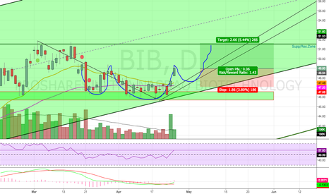 BIB: Bullish Continuation Pattern