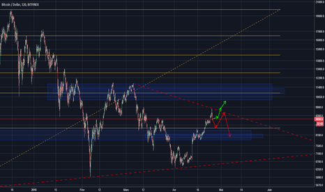 BTCUSD: BTC Projection long terme
