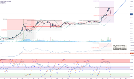 "BTCUSD: BTCUSD Daily Chart for ""Project Trade Like a PRO"""