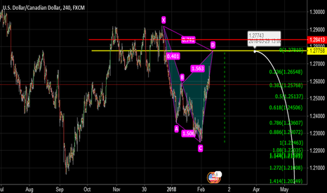 USDCAD: MIRROR BUTTERFLY