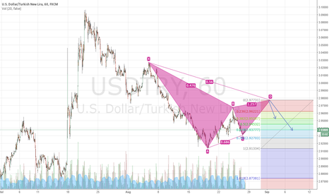 USDTRY: bearish bat?