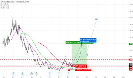 GDXJ: Long GDXJ: Target Price $100 from $31