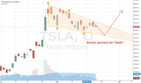 TSLA: Bullish Pennant for Tesla?