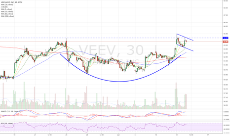 VEEV: Cup and handle
