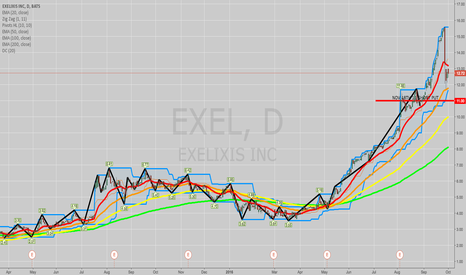EXEL: OPENING: EXEL NOV 18TH 11 SHORT PUT