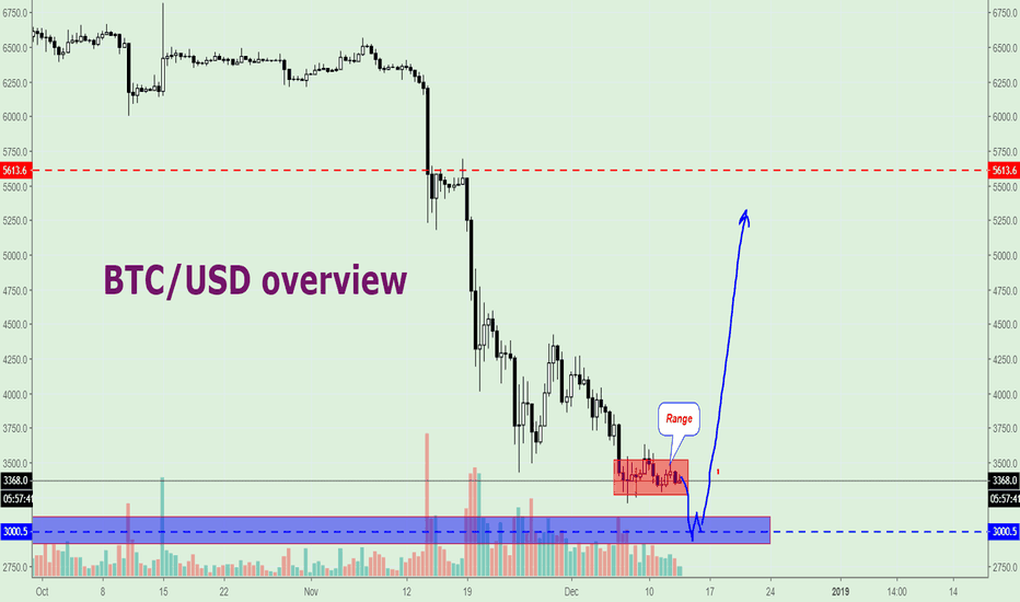 XBTUSD: Bitcoin (BTC/USD) overview, Price will hit $3000.