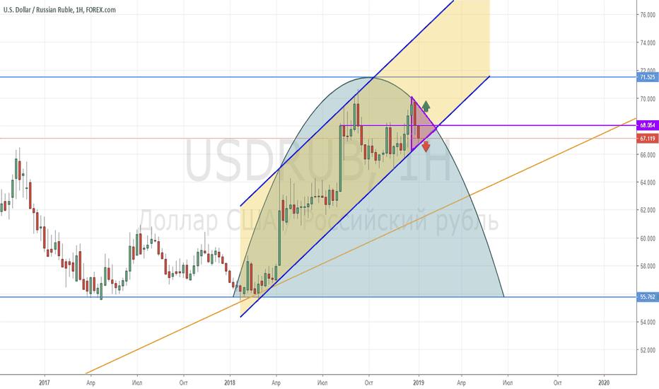 USDRUB: USD/RUB_2019/01/09
