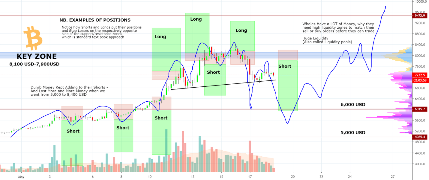 IMPORTANT Understand How BITCOIN-WHALES Think! for BITMEX:XBTUSD by