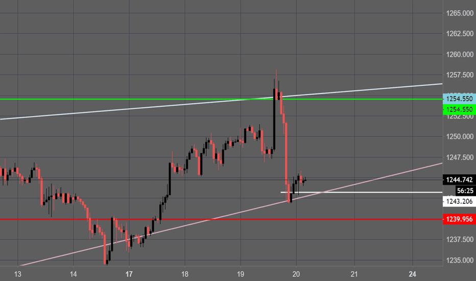 XAUUSD: Gold Trend to 1255+