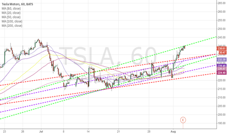 TSLA: TSLA hourly