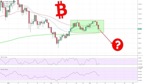 BTCUSD: Is Bitcoin crashing? Are we going to ZERO? Is it Panic Time?