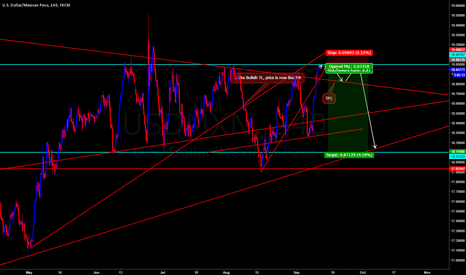 USDMXN: USD MXN SHORT:  Short term & Long term