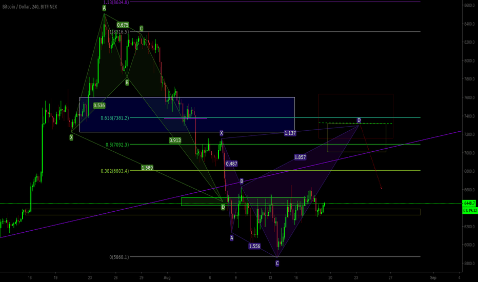 BTCUSD: Bitcoin Looking To Recover Riding With a Shark