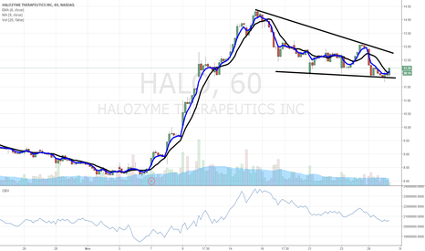 HALO: $HALO bullish