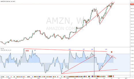 AMZN: AMZN  THEIR DRONES DON'T FLY FOREVER