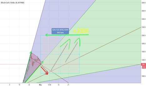 BCHUSD: Bitcoincash 2000$ this month ?? :O