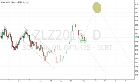 ZLZ2016: CBoT Beanoil still undecided