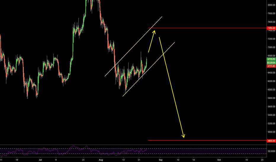 BTCUSD: Bitcoin Bear Flag #2