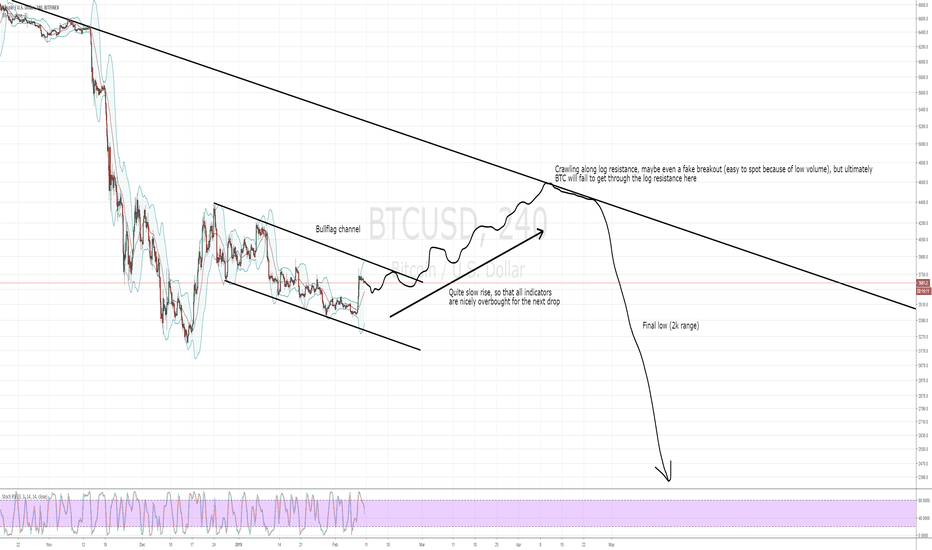 BTCUSD: BTC bullflag and what to expect in the coming weeks