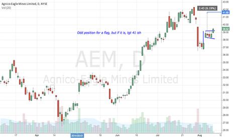 AEM: AEM
