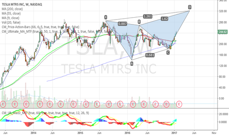 TSLA: GARTLEY PATTERN