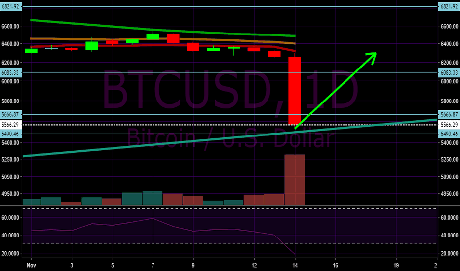 BTCUSD: Bitcoin will bounce up from all time support line