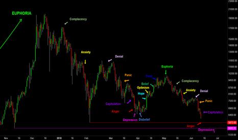 BTCUSD: BTC - Psychology of a Market Cycle