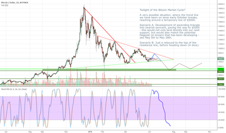 BTCUSD: Twilight of the Bitcoin Market Cycle?