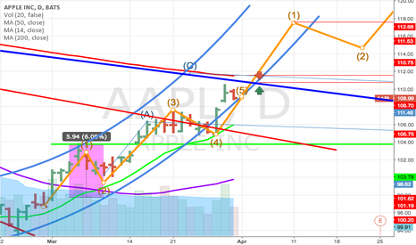 AAPL: I am optimistically long, but so are so many others.