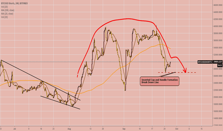 BTCUSDSHORTS: BTC USD Shorts 240 Bitfinex