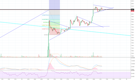 BTCUSD: Flags a flying