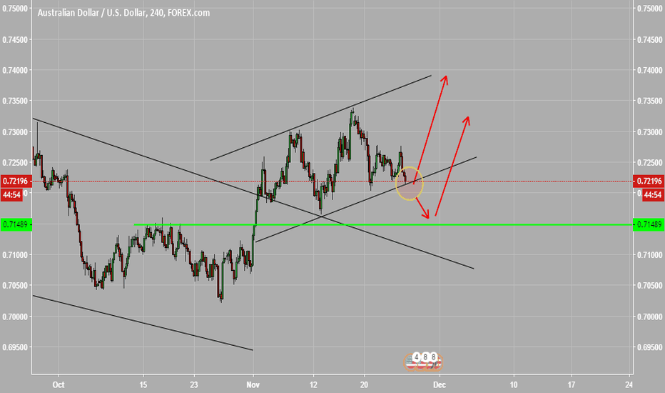 AUDUSD: wait the bull candle for long