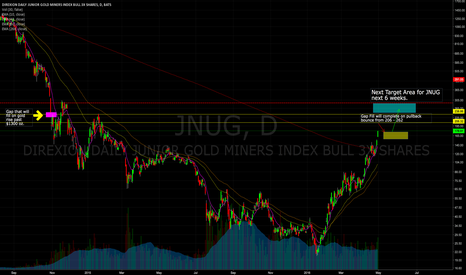 JNUG: JNUG Bull Run with Gold Breakout