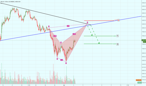 BTCUSDT: Shark Harmonic Pattern on BTC (variation #2)