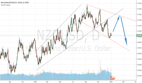 NZDUSD: NZD/USD might go up another scenario