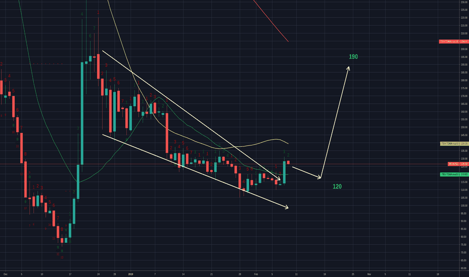 BCHUSD: BCH dropping to 120 then moving to 190