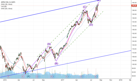 AAPL: Final Stage Before Reversal?