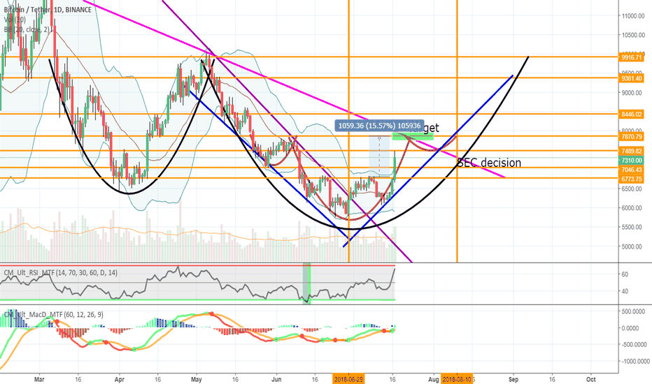 BTCUSDT: Inverse head and shoulders everywhere. Next stop 7.8K then 10K!