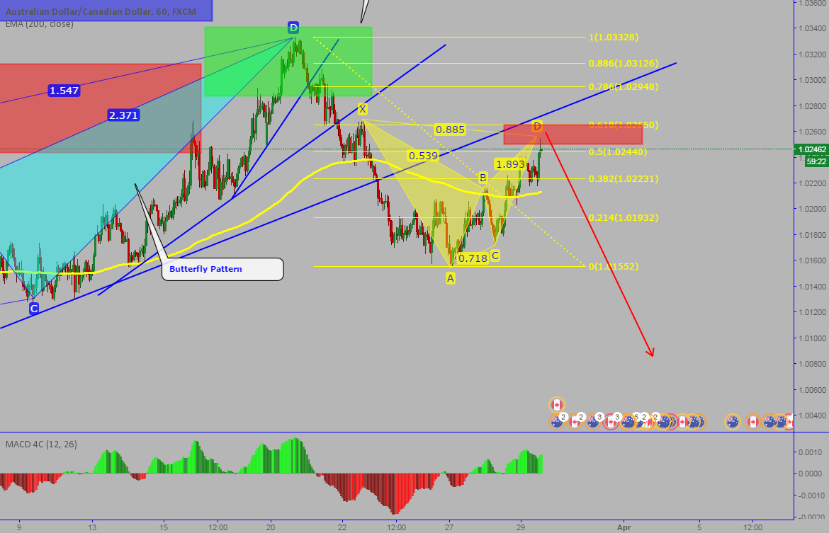 AUDCAD: Completed bearish BAT pattern on 60 min