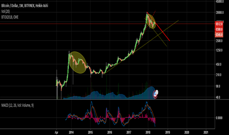 BTCUSD: the year of the bear