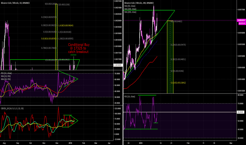BNBBTC: BNB Coin is at a Pivotal Piont in Time.