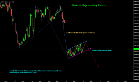 BANKNIFTY: BankNifty : Sharks & Flags in Muddy Waters !
