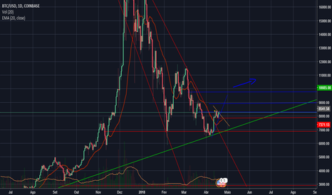 BTCUSD: btc / usd high trend