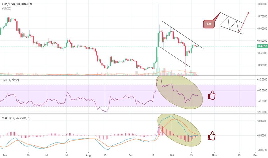 XRPUSD: XRP/USD 1D Chart Long signal ( Flag Pattern)