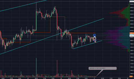 BTCUSD: Bullish candle on support but WHERE'S THE VOLUME?