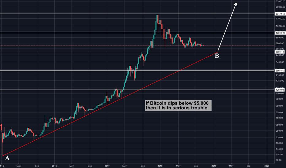 BTCUSD: Bitcoin Bull Market at $5,000