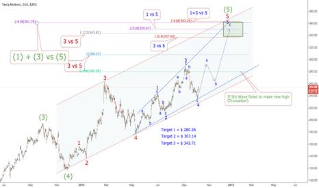 TSLA: 5th Wave is on Progress